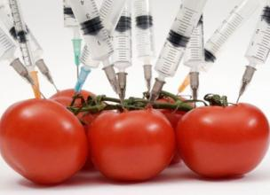 How GMO foods can make China starve itself