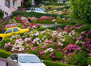 Lombard Street in San Francisco – A Crooked Delight