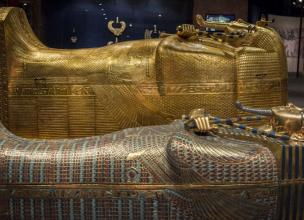 Seven Victims of the King Tut's Curse
