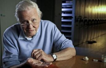 An Introduction to David Attenborough's 'Life' Series