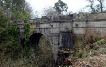 ​  Can dogs commit suicide? The Overtoun Bridge is a proof they can