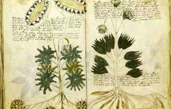 The Voynich Manuscript - Can the book ever be decoded?