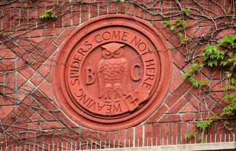Bohemian Club: History, Membership and Legacy
