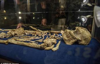 How Little Foot Lived? Science reconstructs the Brain of Our Oldest Ancestor