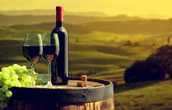 The Fascinating World of Italian Wine