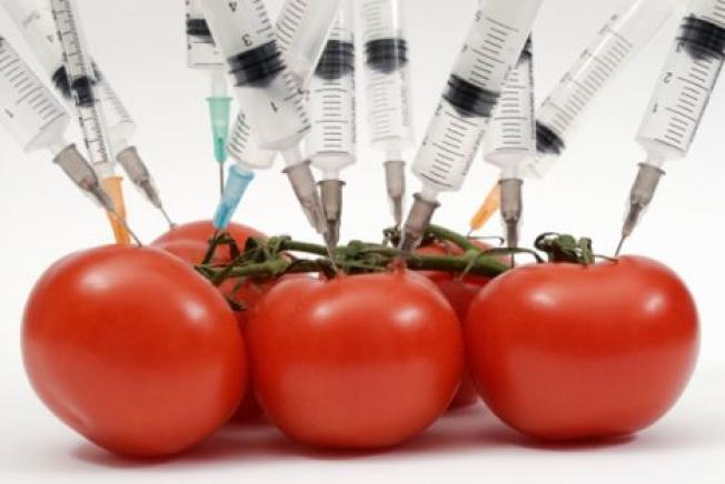 The truth about GMO food - Top 7 frequently asked questions