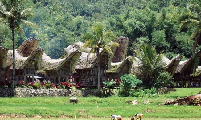 Tana Toraja, Indonesia - A lesser known place to add to your bucket list