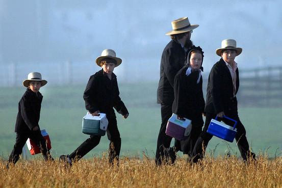 Glimpse into the Amish Community