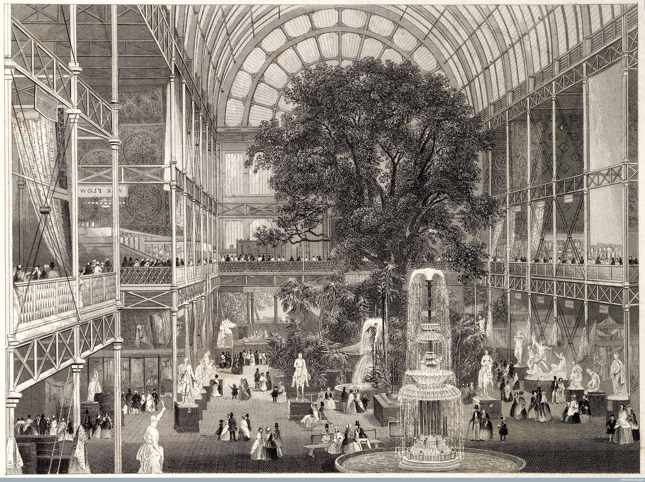 Medicine in the 19th Century - Strange Victorian Era Cures