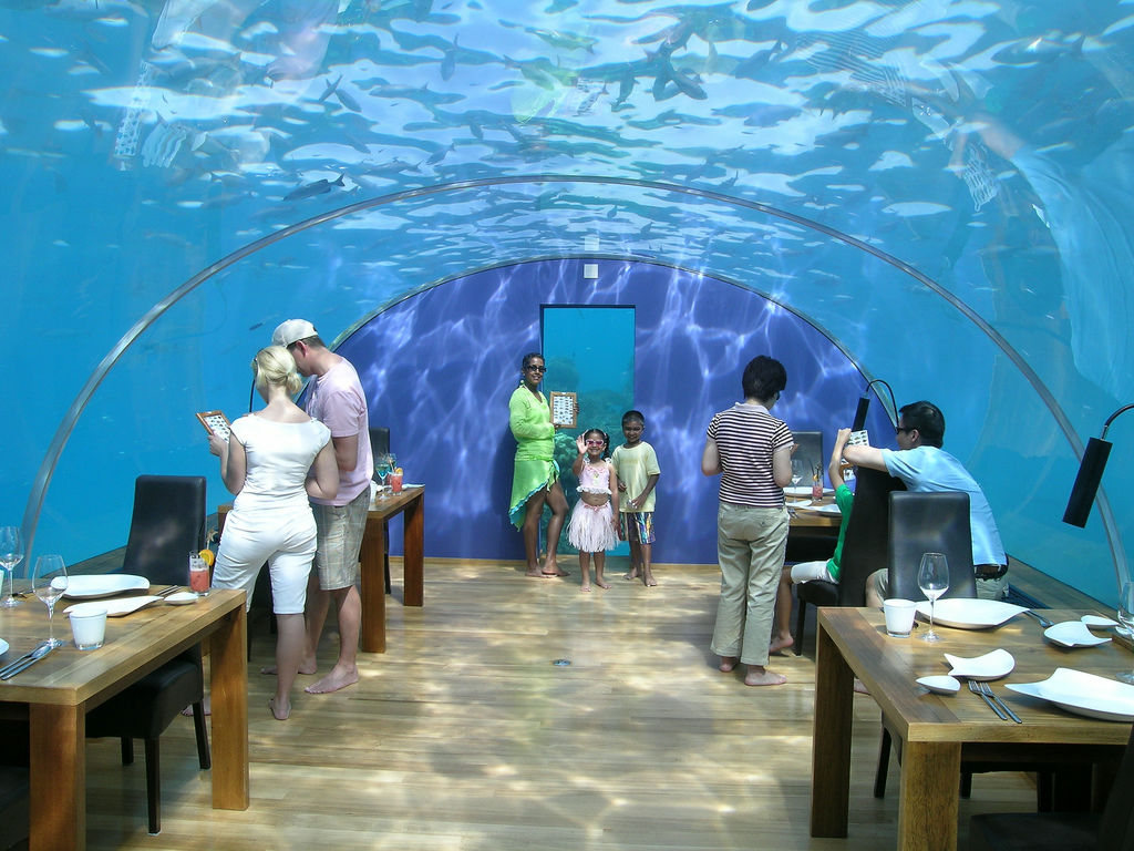 underwater restaurant disney world. Top 10 Most Bizarre Restaurants In The World Underwater Restaurant Disney