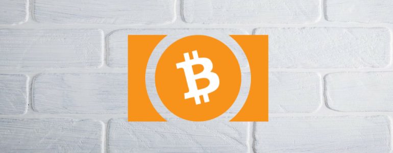 The Rise of Bitcoin Cash