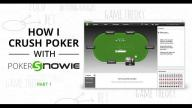 How I Crush Poker With PokerSnowie - Part 1